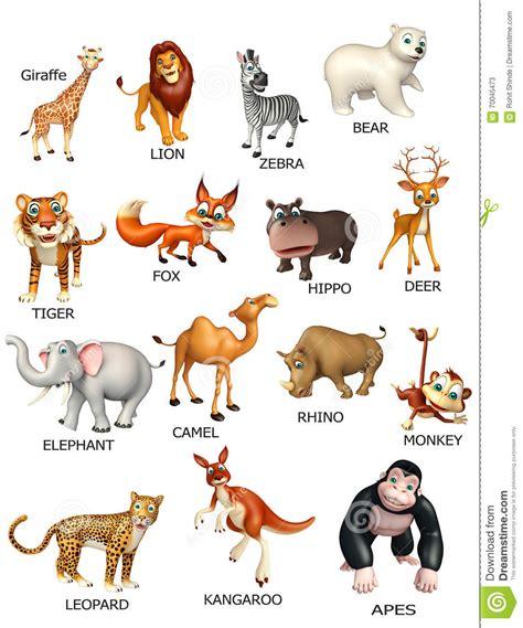 wild animal chart stock illustration illustration