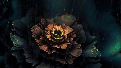 Abstract Dark Flowers Digital Fractal Wallpapers Artwork