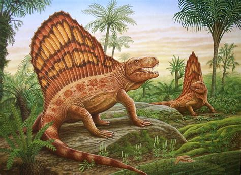 Two Measures Of Teeth (dimetrodon)