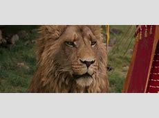 The Lion The Witch And The Wardrobe Aslan wwwimgkidcom