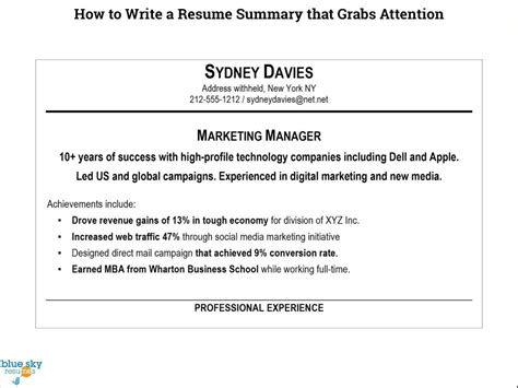 Write Sle Resume by How To Write A Summary For A Resume Modern Resume Exle