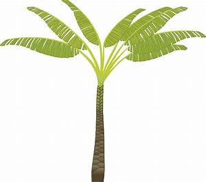 Palm Tree Clip Art Png | Clipart Panda - Free Clipart Images