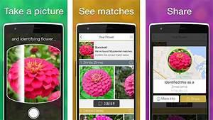 Blumen Erkennen App : app check like that garten blumen identizieren egarden ~ Eleganceandgraceweddings.com Haus und Dekorationen