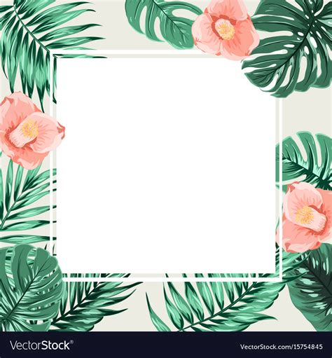 exotic tropical square border frame beige camelia vector image