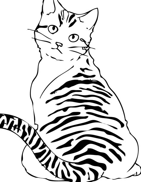 printable cat coloring pages  kids animal place