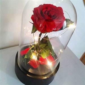 Rose Eternelle Sous Cloche : artifleurs roses ternelles naturelles fleurs artificielles ~ Farleysfitness.com Idées de Décoration