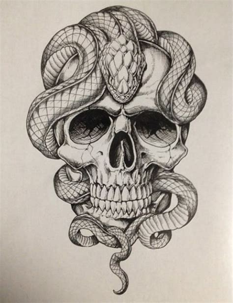 skull  snakes ideas tattoos snake tattoo skull tattoos