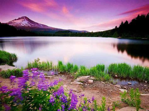 1600x1200 Nature Scenery 1600x1200 Resolution HD 4k ...