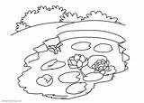 Coloring Water Lily Pond Pages Flowers Printable Print Adults sketch template