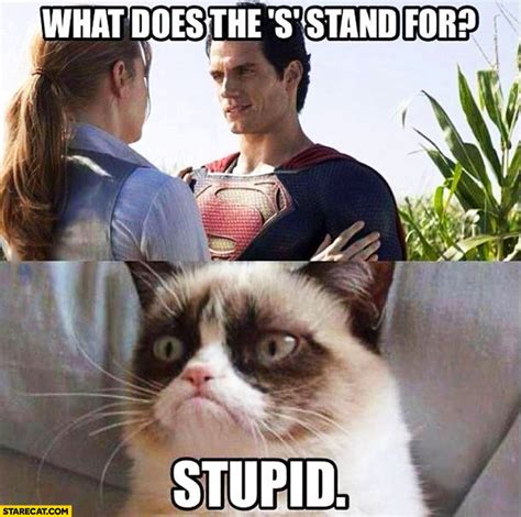 What Does Memes Stand For - what does the s stand for superman stupid grumpy cat starecat com