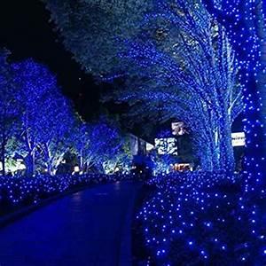 250 LED Blue + White 24V 50M String Fairy Lights Christmas ...