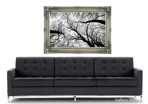 Pecan Grove Black And White Forest Art Mural Printed Wall