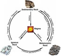 Kinds Of Beds by The Rock Cycle Diagrams To Print Diagram Site