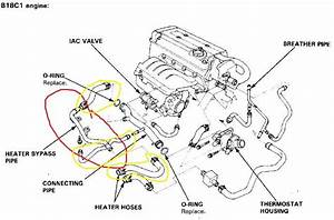 2007 Honda Civic Wiring Diagram  Honda  Wiring Diagram Images