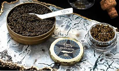 Caviar Expensive Much Why Serving Cost Dish
