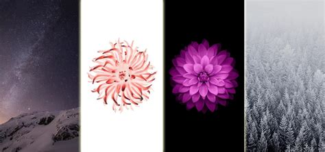 Download All 15 Wallpapers From Ios 8 Right Now « Ios