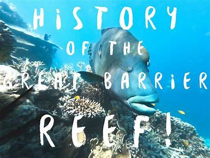 Reef Barrier History Evolution Articles