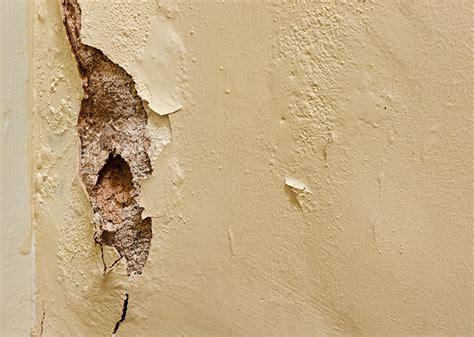 risse mauerwerk ursachen risse im mauerwerk wegen aufsteigender n 228 sse