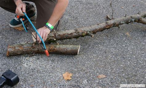 haushaltstipps einen kratzbaum naturkratzbaum fuer