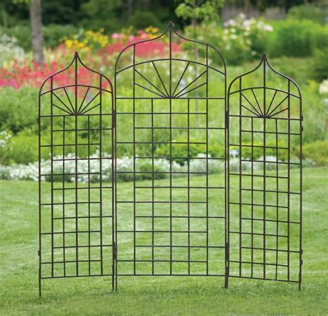 Metal Trellis by Use Metal Garden Trellis To Improve The Look Of Your Garden