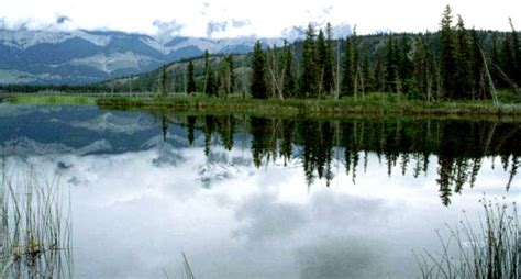 PHOTO ALBUM - HIKING IN THE MAGNIFICENT CANADIAN ROCKIES ...