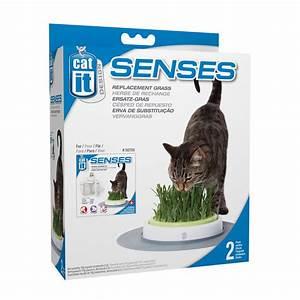 Graine Herbe A Chat : 2 recharges herbe chat graines 70 g vermiculite 50777 achat vente accessoire chat sur ~ Melissatoandfro.com Idées de Décoration
