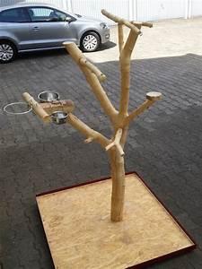 Vogelkäfig Selber Bauen : papageienfreisitz selber bauen so wird s gemacht ~ Lizthompson.info Haus und Dekorationen