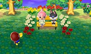 Animal Crossing New Leaf Furniture Fish Series