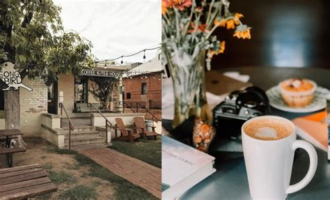 We've listed the top ten (based on number of businesses) above. Here Are 10 of the Best Coffee Shops in Arizona You Absolutely Must Try
