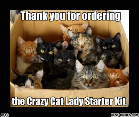 Crazy Cat Lady Meme - thank you for ordering cat meme cat planet cat planet