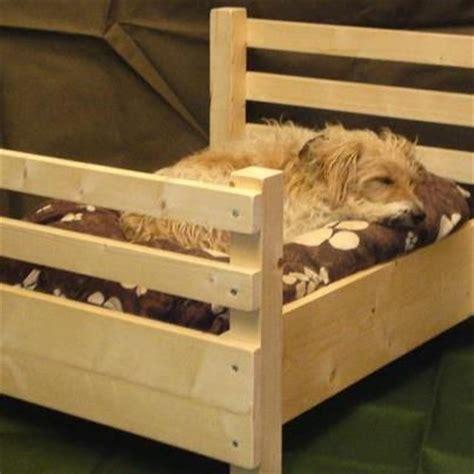 doggone cute diy pallet dog beds  pampered pooch