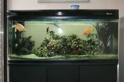 fish aquarium for sale 10ft fish tanks for sale aquariums large acrylic 10 foot fish aquarium 3500 2017