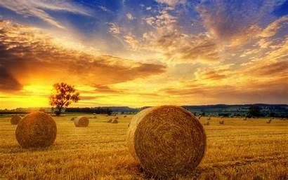 Autumn Harvest Field Landscape Desktop Sunset Wallpapers