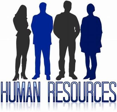 Human Resources Hr Management Training Business Pixabay