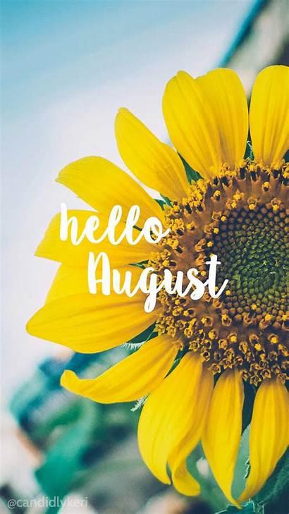 Happy Background August Bright Sunflower Hello Desktop