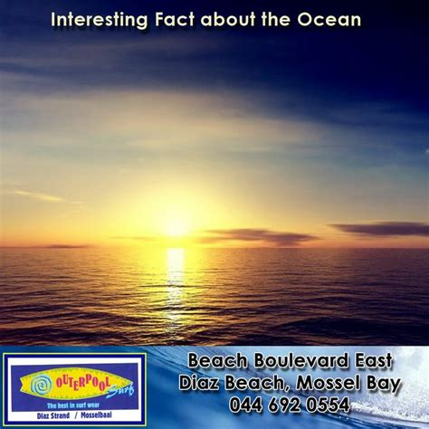 Facts About The Ocean Floor by 27 Best Images About Surprising Facts About The Earth And