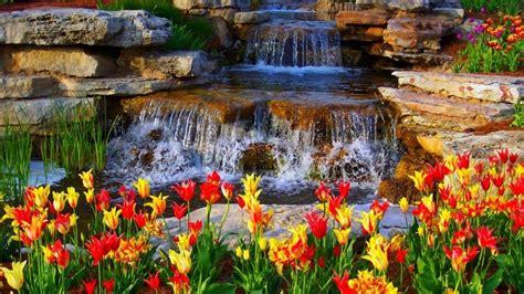 Hd Nature Wallpapers Desktop Images Download Cool