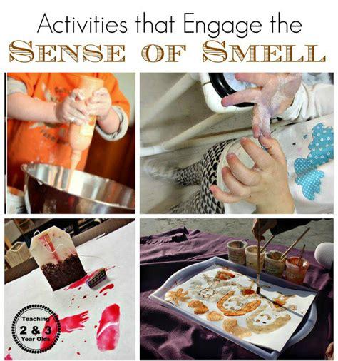 smell activities for preschool activities using the five senses 569