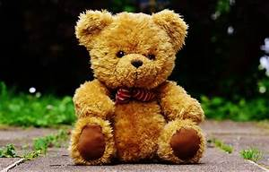 Free Images : sweet, cute, fabric, teddy bear, textile ...
