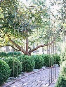 Sichtschutz Bäume Immergrün : sichtschutz garten b ume immergr ne pflanzen holz zaun garten pinterest sichtschutz garten ~ Eleganceandgraceweddings.com Haus und Dekorationen