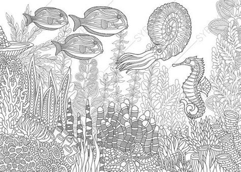 coloring pages  adults seahorse nautilus tropical fishes seaocean coloring pages