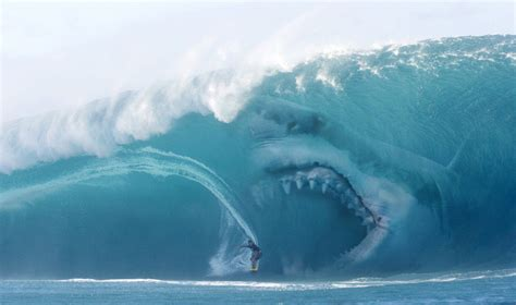 Is This Man Surfing with a Whale? | Snopes.com