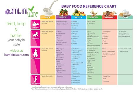 reference cuisine 1000 images about baby on baby foods