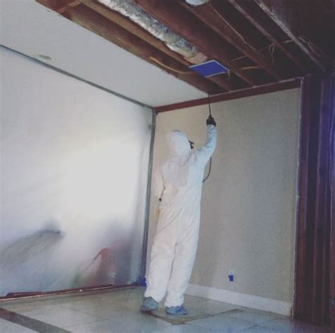 mold removal service    common places  mold growth