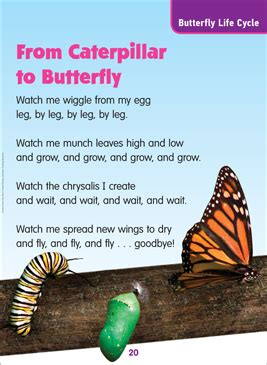 caterpillar  butterfly science poem printable