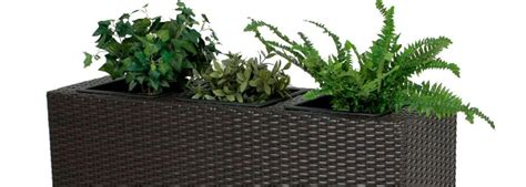 pflanzen als raumteiler pflanzen als raumteiler trennwand kreative wohnideen mit raumteiler raumtrenner paravent