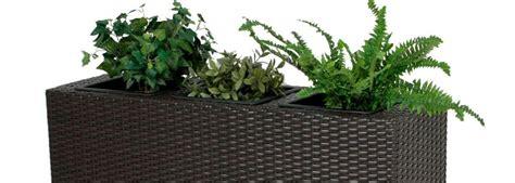 pflanzen als raumteiler pflanzen als raumteiler trennwand kreative wohnideen