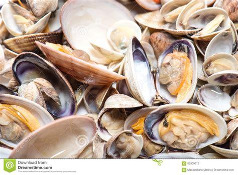 cuisiner des palourdes fraiches fruits de mer palourdes fraîches et coques préparés photo