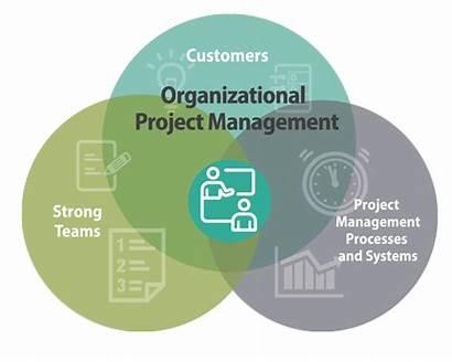 Management Project Organizational Organization Services