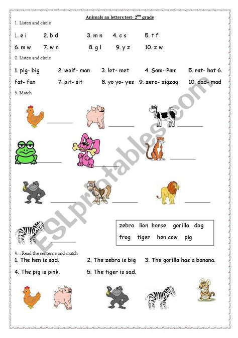 animals 2nd grade esl worksheet by annaj